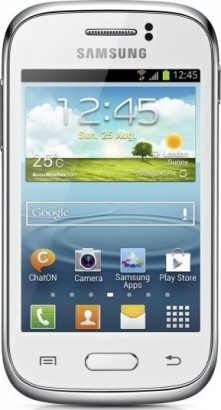 Samsung GT S6310 Galaxy Young White