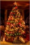 Vánoční osvětlení domů