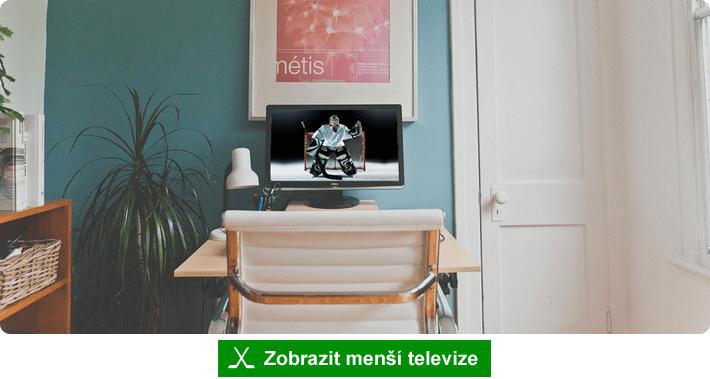 Mistrovství světa v hokeji na menší televizi