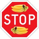 Banány nepatří do ledničky
